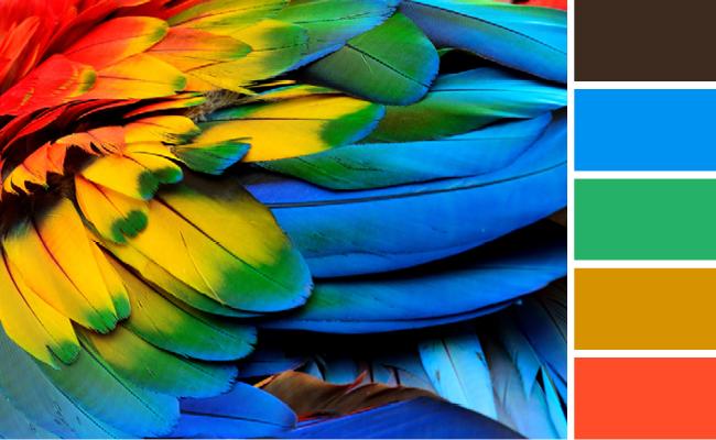ホームページの配色パターン、色彩心理学